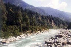 Riverside Hotels in Manali India
